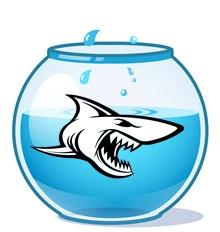 hierarchie-solution-eliminer-requin-2.jpg