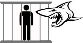 hierarchie-solution-eliminer-requin-3.jpg