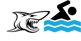 hierarchie-solution-eliminer-requin-4.jpg